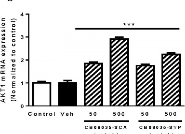 Protective effects of culture extracts (CB08035-SCA and CB08035-SYP) from Marinobacter hydrocarbonoclasticus (strain CB08035) against oxidant-induced stress in human colon carcinoma Caco-2 cells